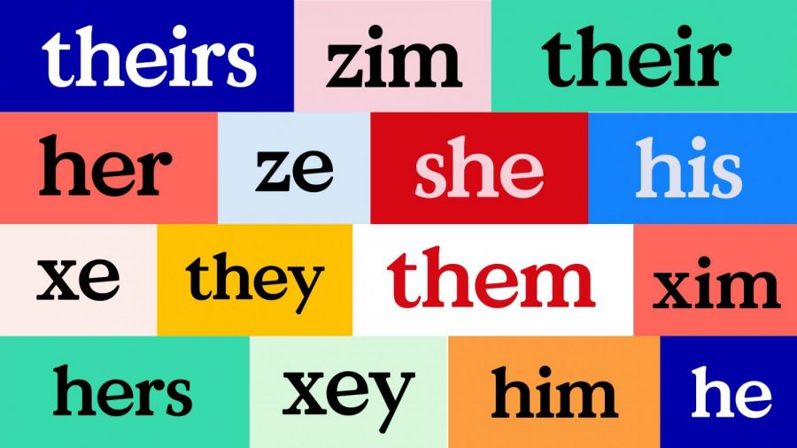 What's Your Pronoun? Empathy found in English Grammar